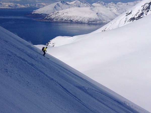 World activities - Spitzbergen