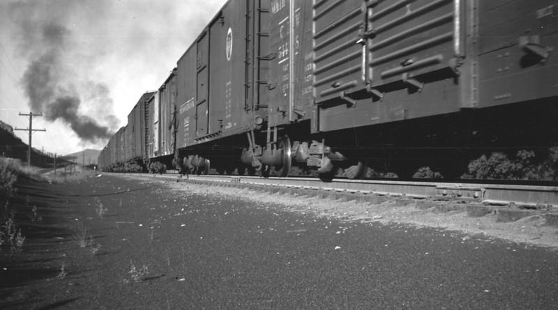UP_4-8-8-4_4024-with-train_Echo_Aug-1946_005_Emil-Albrecht-photo-0208-rescan.jpg
