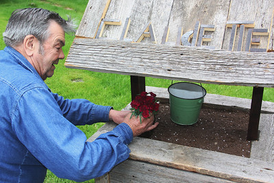 Man Making Flower Box for Wife, Center Street, Tamaqua (5-25-2013)