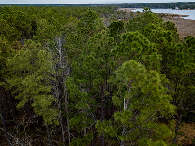 Pamlico County Chair Road waterfront property, NC