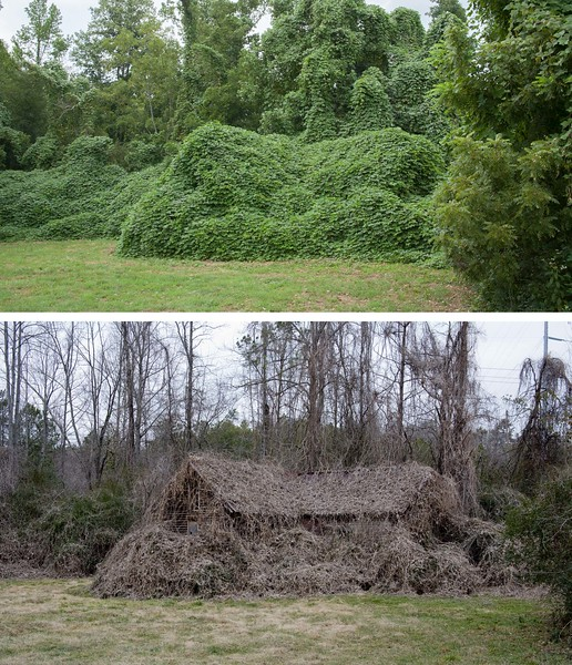 Side by side comparison of the two previous images of this house in Ellijay in both winter and summer.