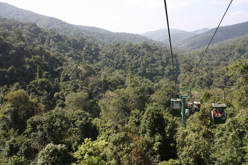 Jinghong, Wild Elephan Valley, skycab through the forest