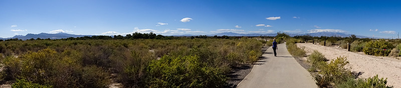 A wonderful mid-day walk out at the Clarke County Wetlands.