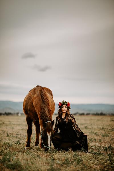 horsey-150.jpg