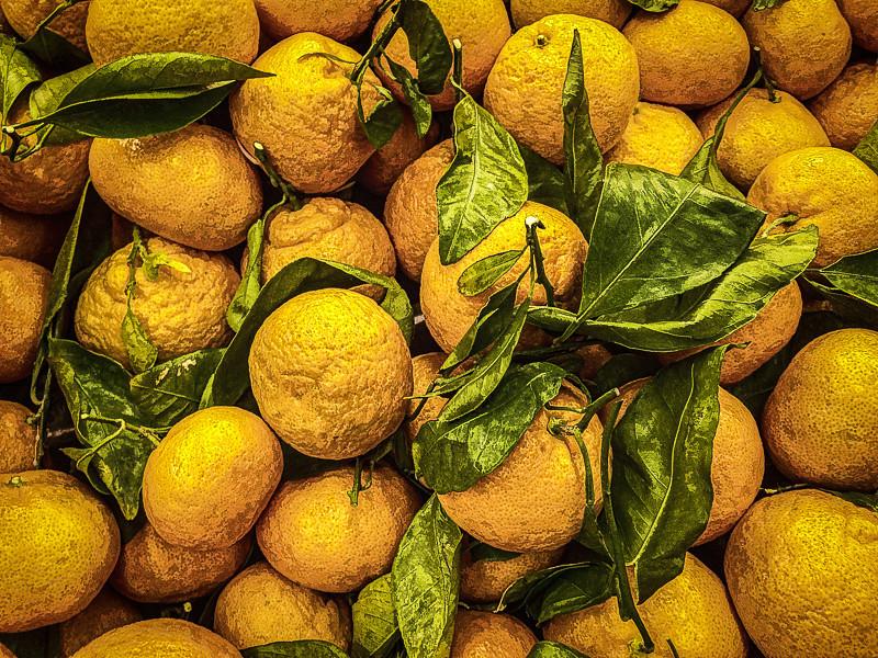 December 5 - Tangerine Heaven-1.jpg
