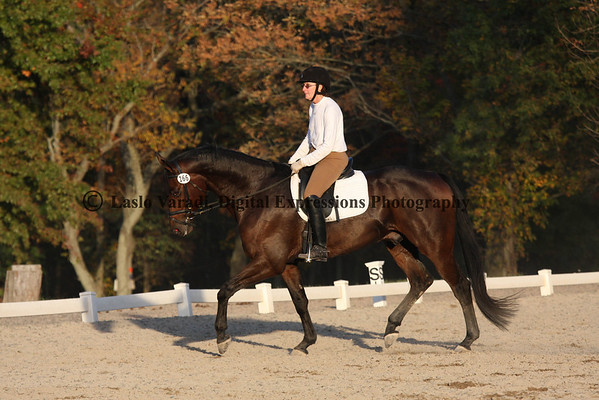Dressage Ring 2 Afternoon-