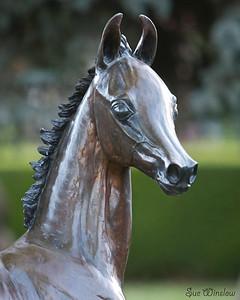 English Riding Clinic 2012