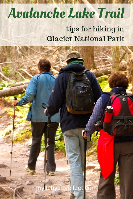 Tips for hiking Avalanche Lake Trail in Glacier National Park