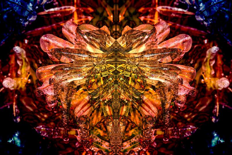 20201014-_DSC4954-Mirror-2-5.jpg