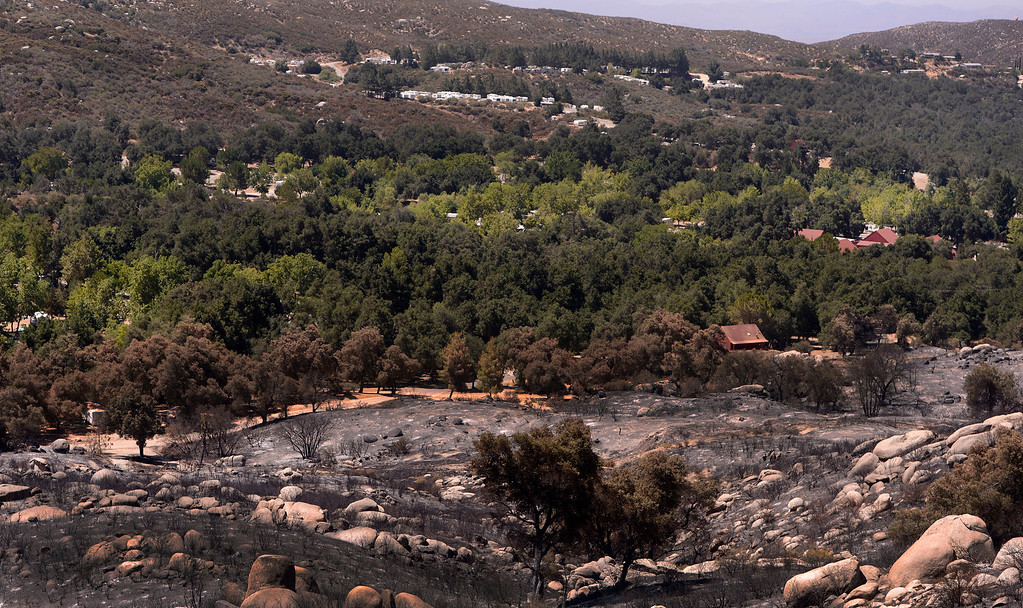 . A view of damage caused by Silver Fire as seen on Poppet Flats Road in the mountains south of Banning August 10, 2013.   GABRIEL LUIS ACOSTA/STAFF PHOTOTGRAPHER.