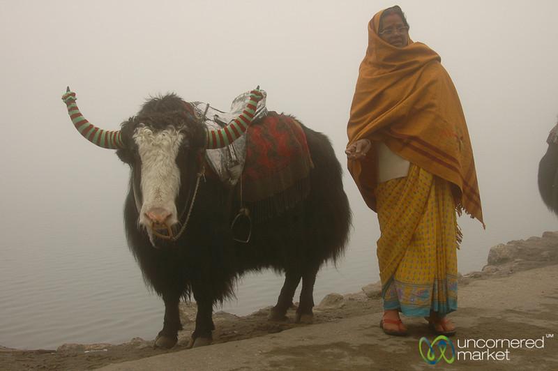 Taking a Walk by Tsomgo Lake - Sikkim