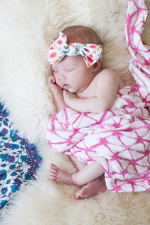 Sage Newborn