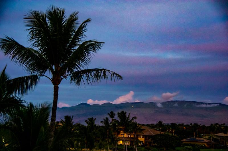 hawaii-9413.jpg