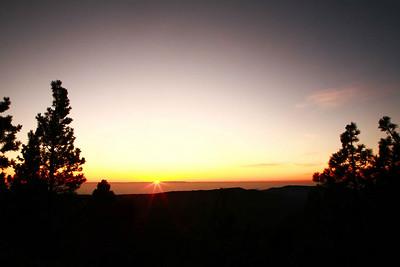 Sequoia 2009