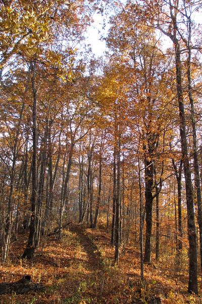 Blackrock Trail - 4,400'
