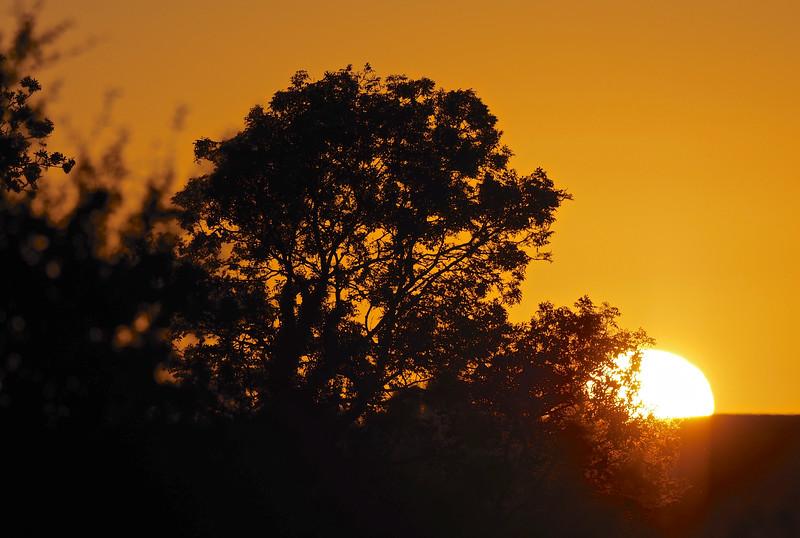 Sunset 19th July