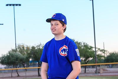 Challenger Little League Cubs 2015