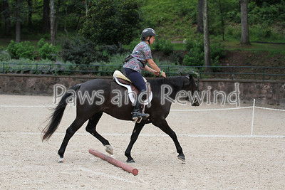 Thursday Afternoon:  Unedited Trotting Pole Sequences