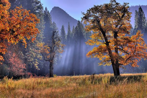 Yosemite-Mono Lake