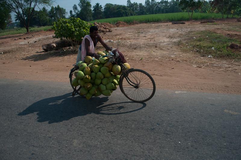 Bangalore-India-1023.jpg