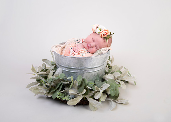 Hailey Newborn 2020