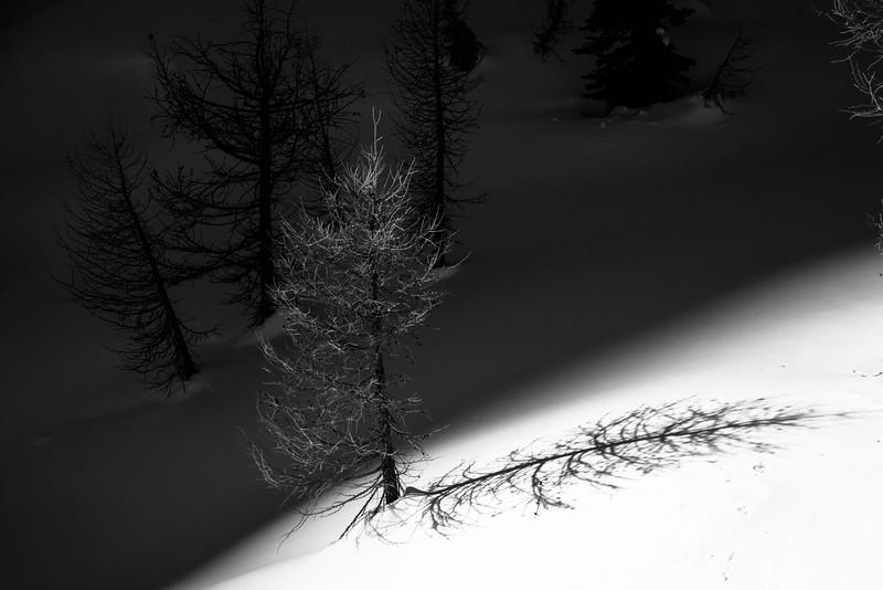 2015_Powder_Creek-34.jpg
