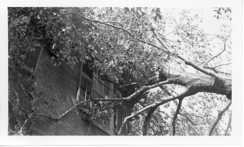 Although the 1938 Hurricane was a major disaster in New England, the Lacey home in Southbridge MA suffered minor damage from the loss of 2 large maple trees which uprooted and leaned against the house. Branches from one of the fallen trees broke through the window of my bedroom and kept me company for a couple nights.