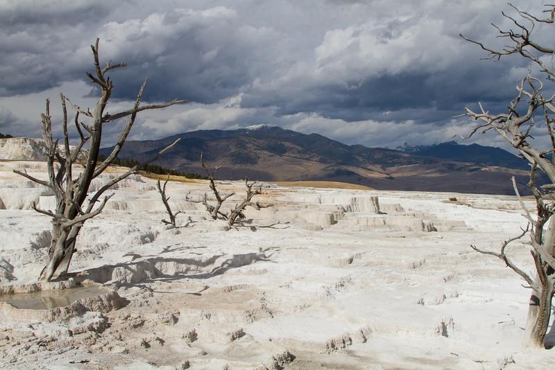 Yellowstone5 753.jpg