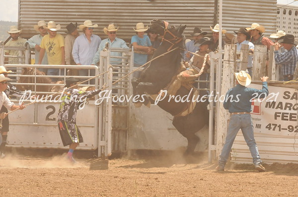 Open Rodeos