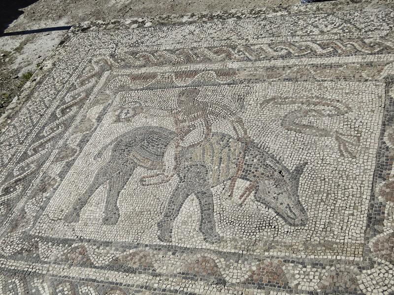 Mosaic - Volubilis Roman Ruins