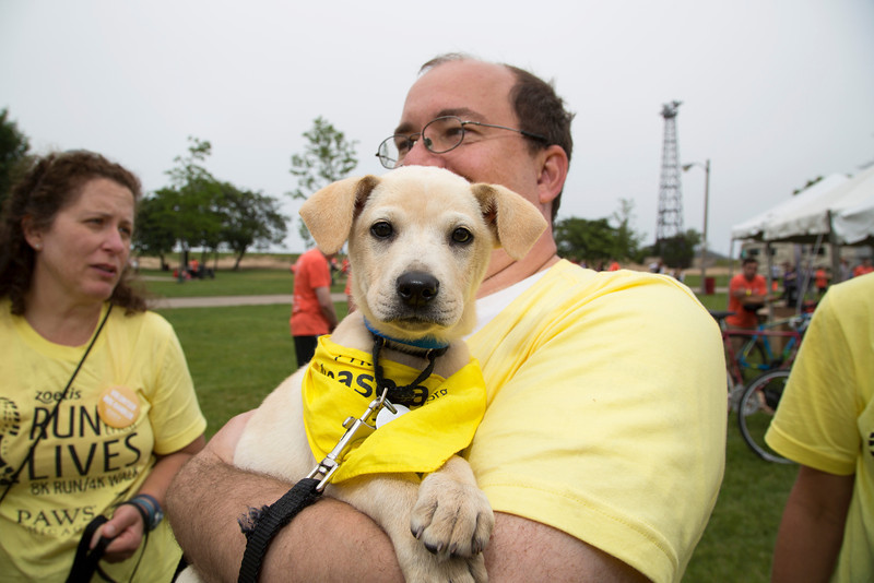 Puppy and Handler (20140621-RfTL-674).jpg