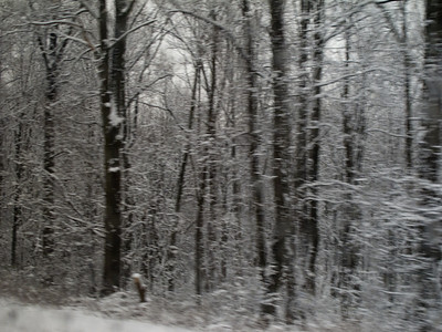 2010-02 winter trip to Greensburg