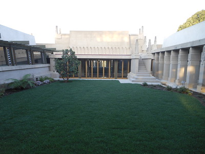 40. Hollyhock House, February 2014