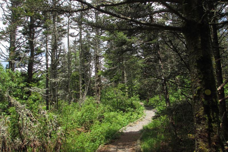 Old Mitchell Trail (6,240')