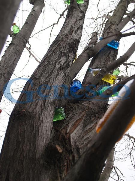 Environmental Art - Sturges Quad Bottles