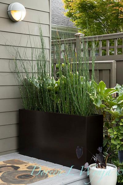 Lisa Bauer - designer's garden_1269.jpg