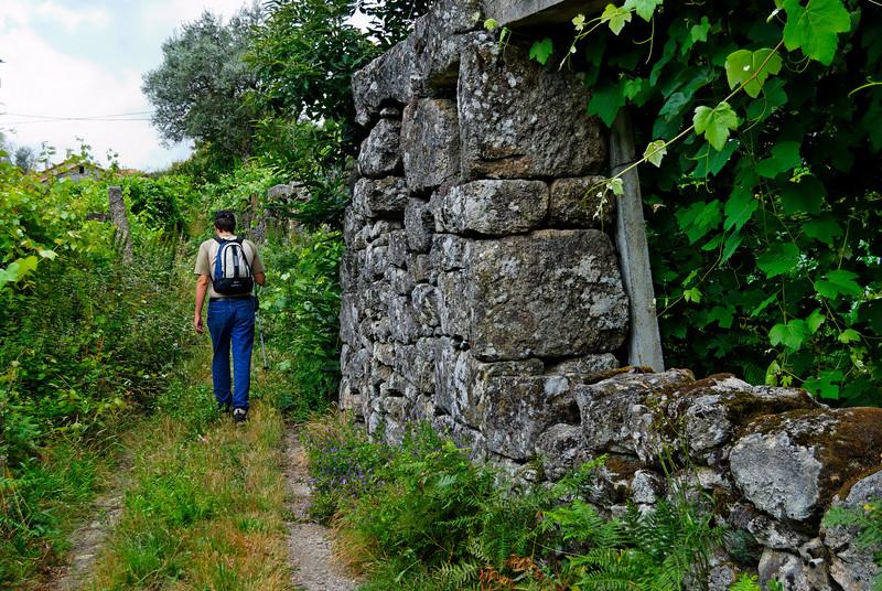 Trilho Medieval - Cambra - Vouzela 20090705 - 4737.jpg