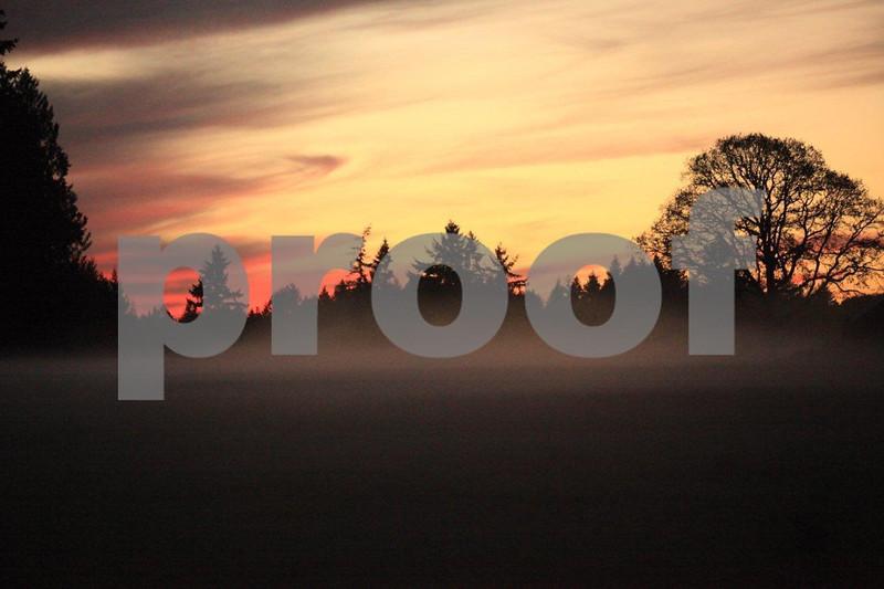 Ground fog 6542.jpg