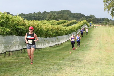 Run the Vineyards Autumn Trail 8K/5K