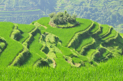 Jiabang
