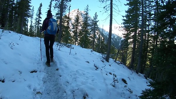 In Search of Larch