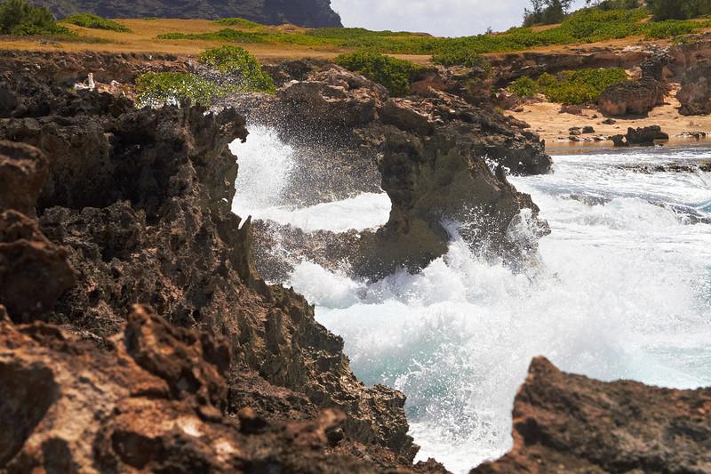 Hawaii931.jpg