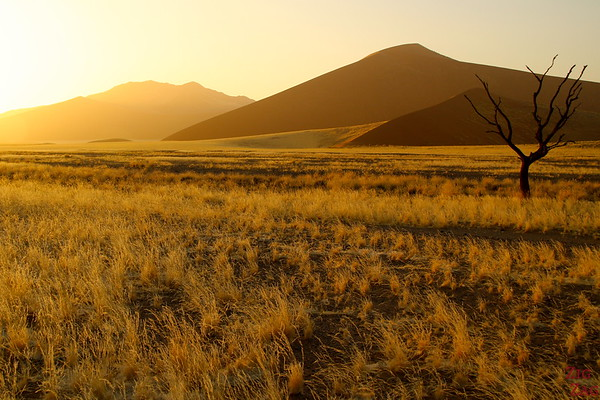 Sunrise at dune 45, Sossusvlei Namibia photo 2