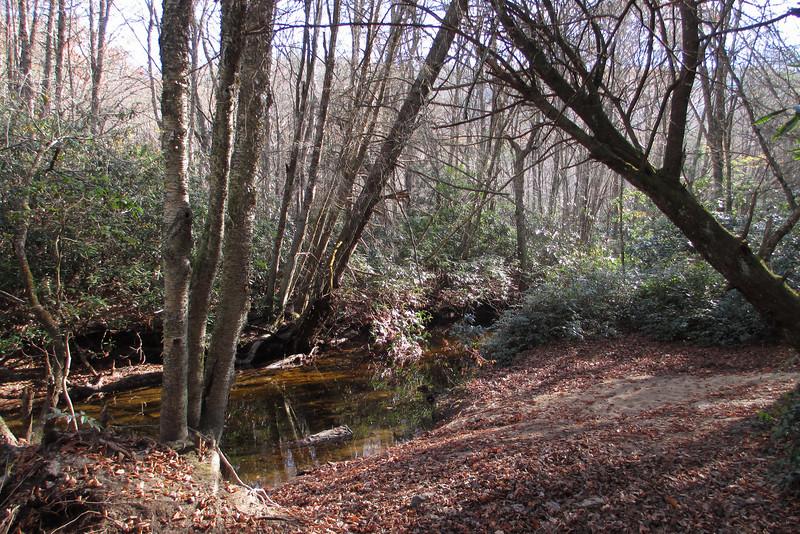 Panthertown Valley Trail - 3,640'