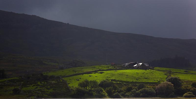 130 - Wales - 5411.jpg