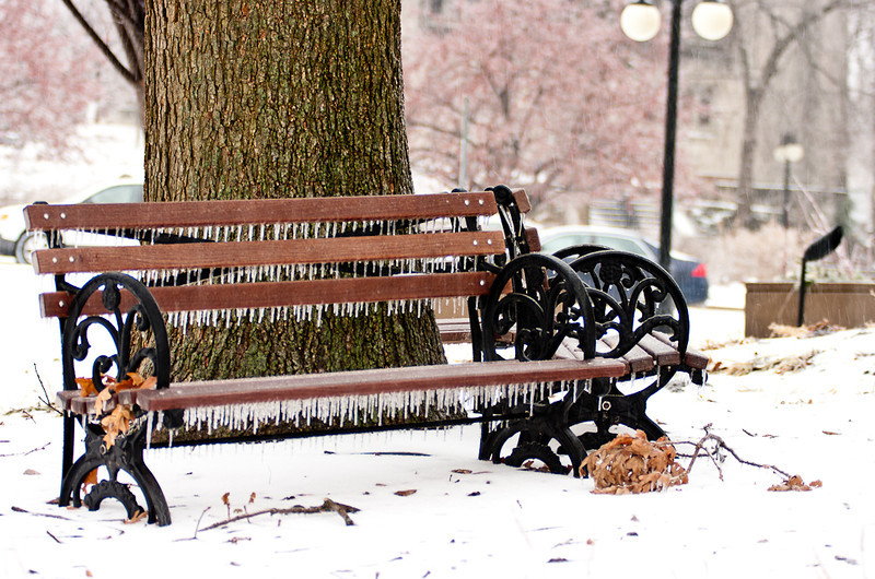 """Bench at City Hall during """"Snowmageddon"""" featured on University City Patch website: http://universitycity.patch.com/articles/ice-coats-university-city#photo-4707289"""