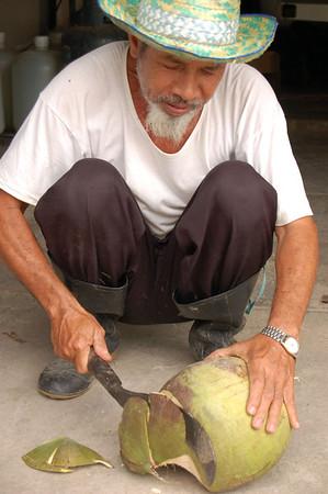Coconuts!!!