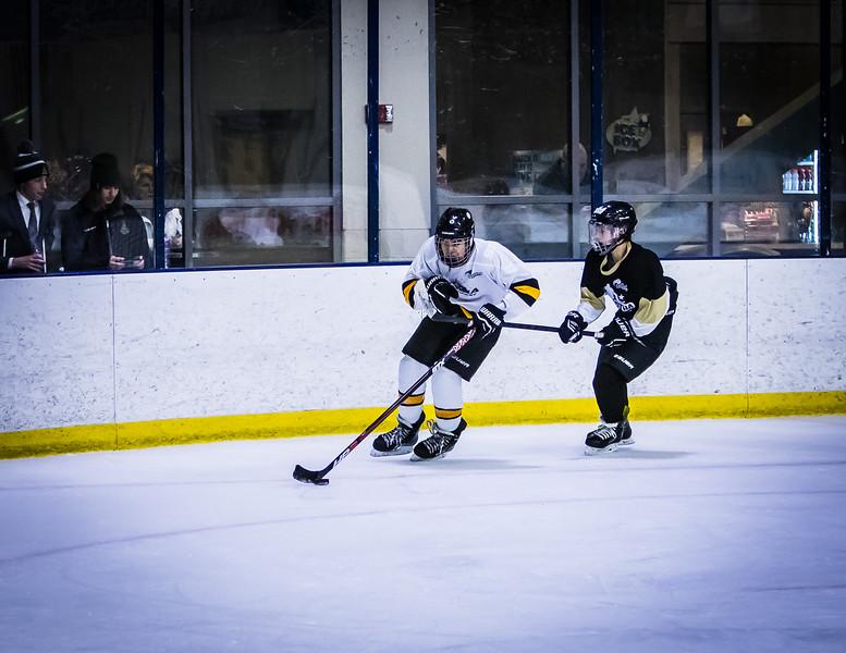 Bruins-216.jpg