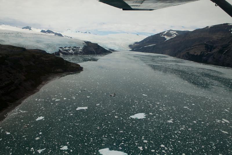 Alaska Icy Bay-3880.jpg