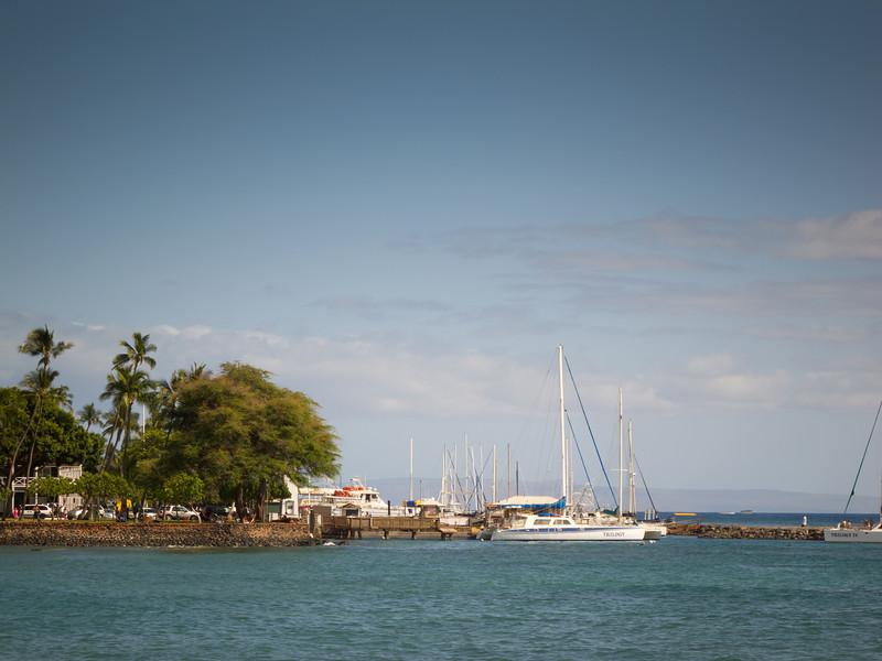 2010 04/14 to 04/24: Maui